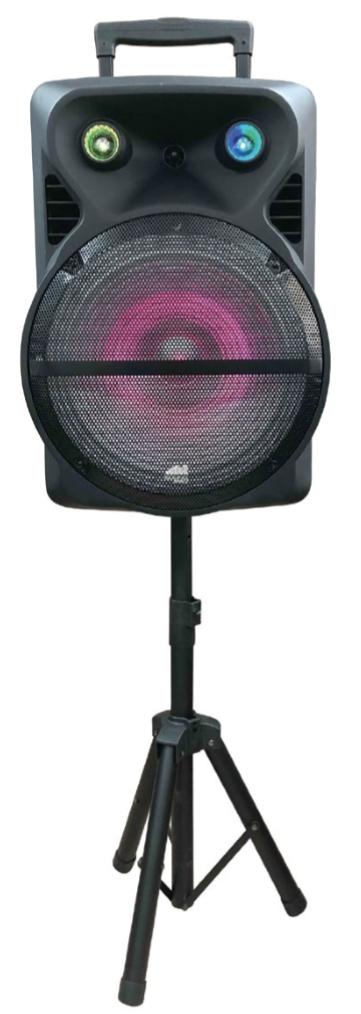 15-Inch Portable Party Speaker Combo Kit